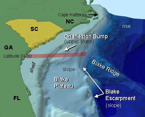 Blake Plateau